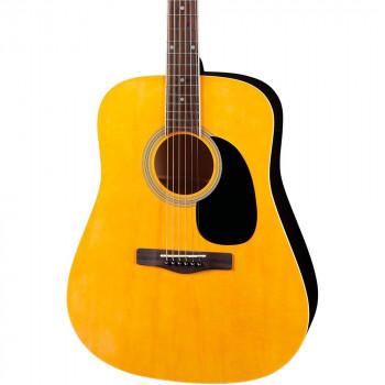 Rogue RD80 Dreadnought guitarra acústica-656238012836-0